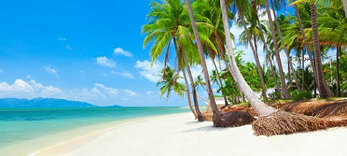 asia-thailand-koh-samui-tropical-beach-with-palms-1024x460